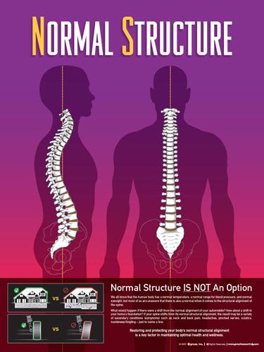 Normal Structure at Corrective Chiropractic: Josh Bailey, DC in Auburn WA